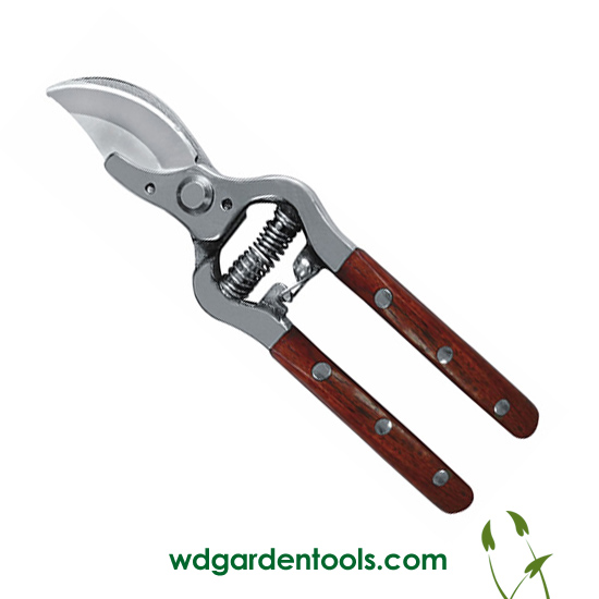 Small pruning shears